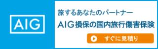 AIG損保 国内旅行傷害保険